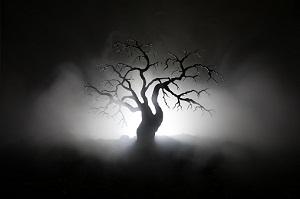 Halloween-Little-Beech-Tree-Pub-Rowley