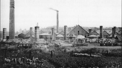 old-image-of rowley-beech-tree-inn
