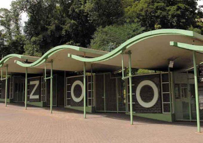 tecton-example-zoo-entrance-little-beech-pub